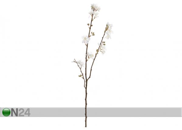 Tekokukka kermansävyiset kukat 68 cm SH-63556