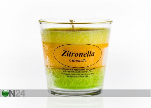 Palmuvahakynttilä lasissa SITRUS CO-77659
