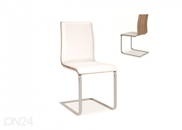Tuoli WS-89586