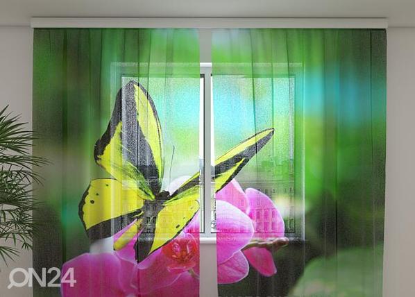 Sifonki-kuvaverho BRIGHT COLOURS 240x220 cm ED-99915